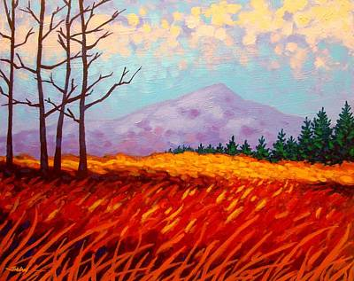 Sugar Loaf - Wicklow - Ireland Art Print by John  Nolan