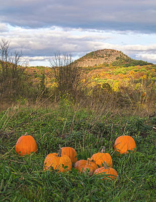 Photograph - Sugar Loaf Mountain Pumpkins by Angelo Marcialis