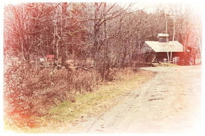 Photograph - Sugarbush Farm by Mike Martin