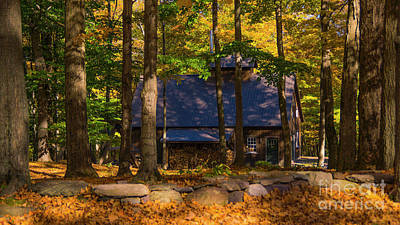 Photograph - Sugarhouse In The Woods by Scenic Vermont Photography
