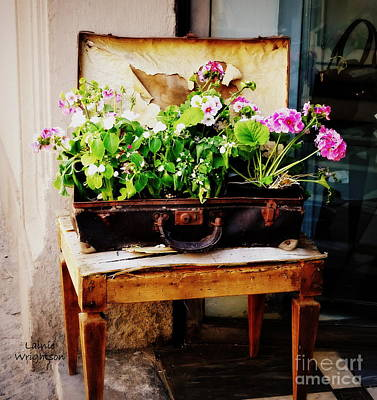 Photograph - Suitcase Of Flowers by Lainie Wrightson