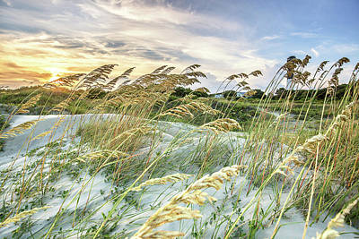 Photograph - Sullivan's Island Breeze by Donnie Whitaker