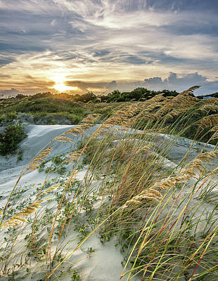Photograph - Sullivan's Island Dunes by Donnie Whitaker