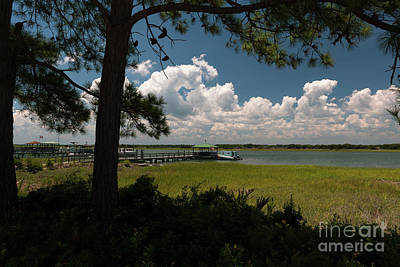 Photograph - Sullivan's Island Sea Breeze Along The Icw by Dale Powell