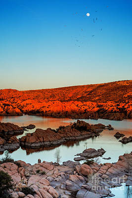 Watson Lake Photograph - Sultry Summer Nights by Nancy Forehand