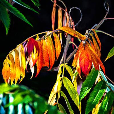 Sumac Tree Photograph - Sumac 2 - Paint by Steve Harrington