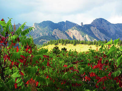 Photograph - Sumac And Flatirons 2 by Marilyn Hunt