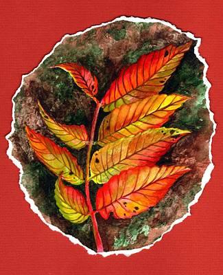 Sumac Original by Carrie Auwaerter