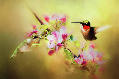 Birds Living In Nature Photograph - Summer Affair by Darren Fisher