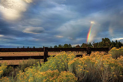 Photograph - Summer Afternoon Rainbow by Cat Connor