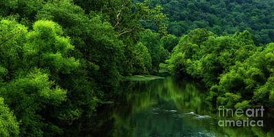 Photograph - Summer Along Elk River by Thomas R Fletcher