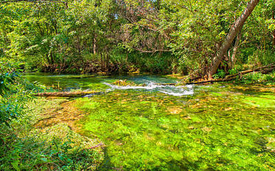 Summer At Alley Springs Art Print by John M Bailey