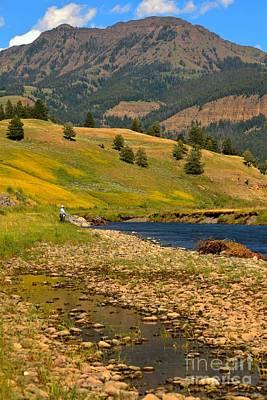 Lamar River Photograph - Summer At Lamar Valley by Adam Jewell