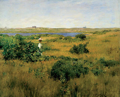 Painting - Summer At Shinnecock Hills by William Merritt Chase
