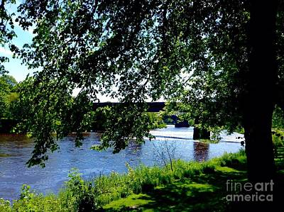 Photograph - Summer At The Riverside by Joan-Violet Stretch