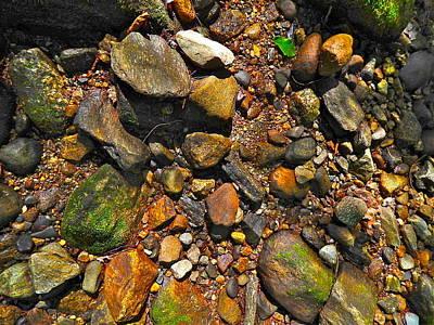 Photograph - Summer B2015 156 by George Ramos