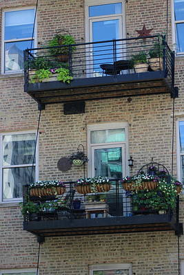 Photograph - Summer Balconies In Chicago Illinois by Colleen Cornelius