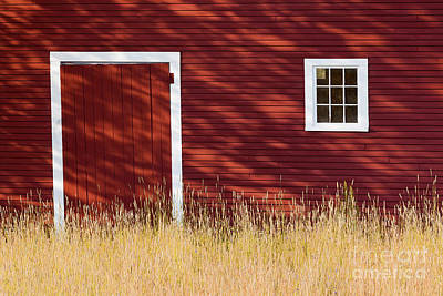 Photograph - Summer Barn Shadows by Alan L Graham