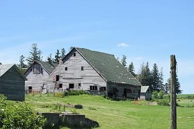 Photograph - Summer Barns by Bonfire Photography