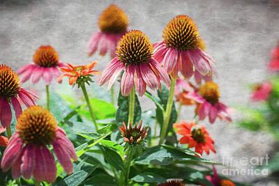 Photograph - Summer Beauties by Susan Warren