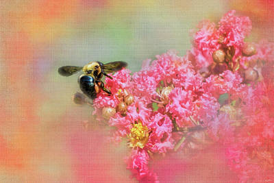 Photograph - Summer Bee by Jai Johnson