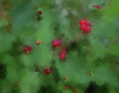 Digital Art - Summer Berries by Aliceann Carlton