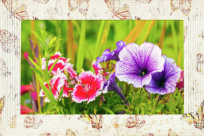 Photograph - Summer Blooms by Terri Waters