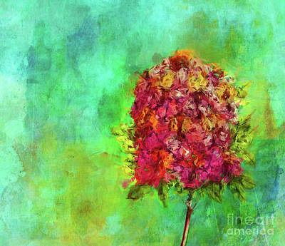 Photograph - Summer Bouquet by Judi Bagwell