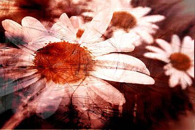 Digital Art - Summer Breeze by Fine Art By Andrew David