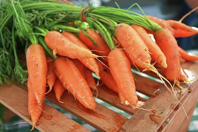 Valentines Day - Summer Carrots by KG Thienemann