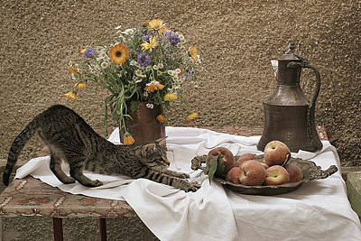 Summer Composition With Cat Art Print by Floriana Barbu