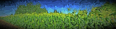 Digital Art - Summer Corn by Richard Farrington