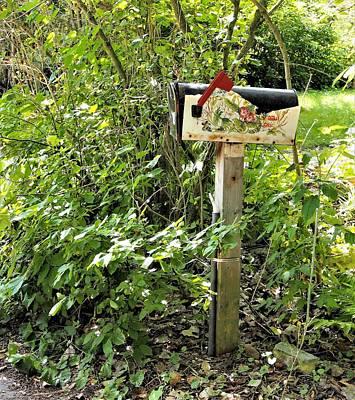 Photograph - Summer Cottage Mailbox by David Pantuso