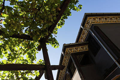 Photograph - Summer Courtyard - Decorated Eaves And Grape Trellis In The Sunshine by Georgia Mizuleva