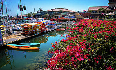 Photograph - Summer Days At The Ventura Harbor by Lynn Bauer