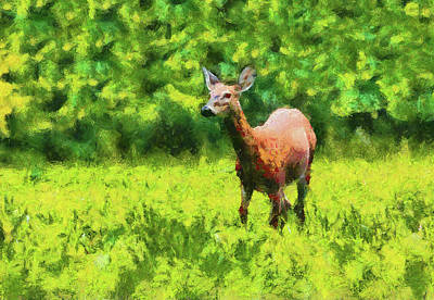 Painting - Summer Doe by Dan Sproul