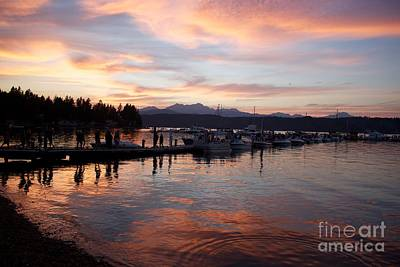 Photograph - Summer Evening At Alderbrook by Terri Thompson