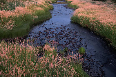 Summer Evening On Palouse River Art Print by Jerry McCollum