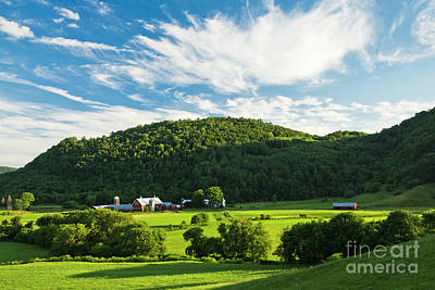 Photograph - Summer Farm Landscape by Alan L Graham