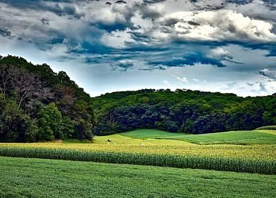 Cornfield Photograph - Summer Farmland by Mountain Dreams