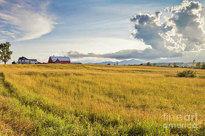 Photograph - Summer Farmscape by Alan L Graham