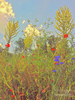Photograph - Summer Flowers And Clouds by Todd Breitling