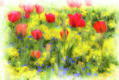Photograph - Summer Flowers Art by David Pyatt