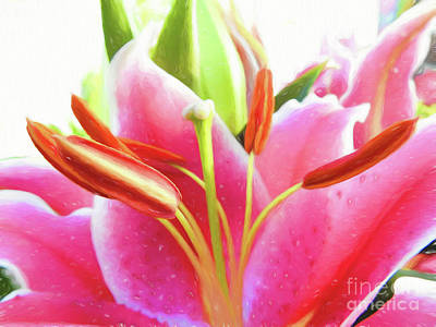 Photograph - Summer Flowers II by Scott Cameron