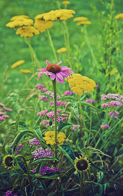 Photograph - Summer Flowers by Virginia Folkman