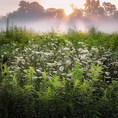 Sunrise Photograph - Summer Fog by Bill Wakeley