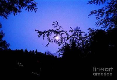 Art Print featuring the photograph Summer Full Moon by Garnett  Jaeger