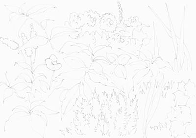 Drawing - Summer Garden In Bloom Pattern - Line Illustration  by Mike Jory