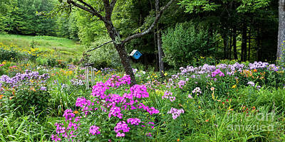 Photograph - Summer Garden Panorama by Alan L Graham