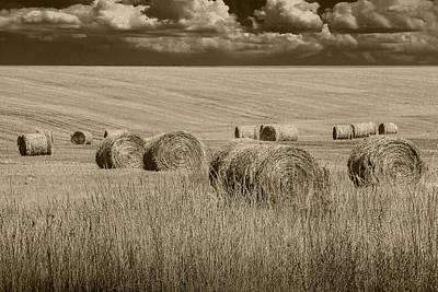 Randall Nyhof Royalty Free Images - Summer Harvest Field with Hay Bales in Sepia Royalty-Free Image by Randall Nyhof